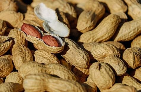 Arachidi- nuts-1736520_960_720