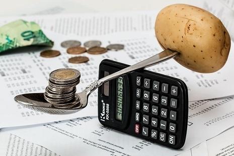 bis Spesa sostenibile-coins-1015125_960_720