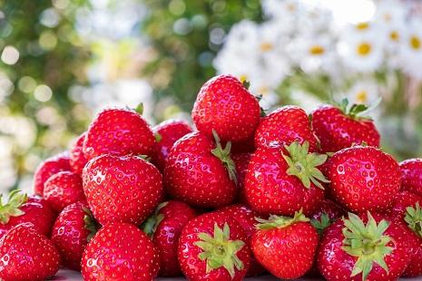 Fragole-strawberries-5099527_960_720