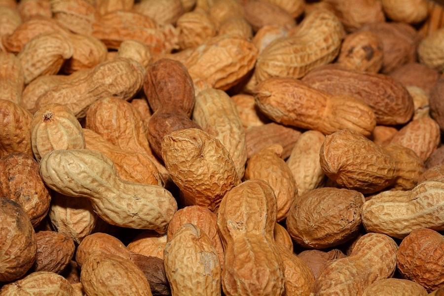 Green Style – arachidi- peanuts-618547_960_720