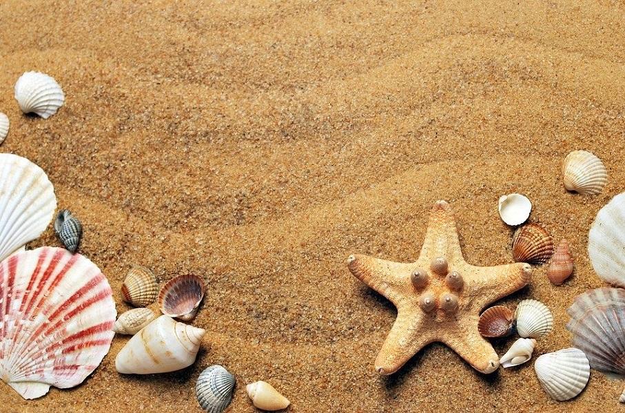 Spiagge-Numeri Economia-sea-1337565_960_720